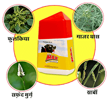 sumi max for soyabean crop